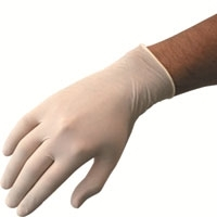 Latex Workshop Gloves Large 100